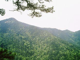 Banovići - Konjuh mountain peak, 1328 m