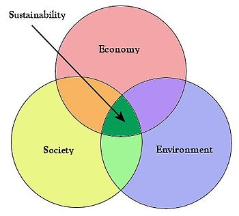 sustainability triple bottom line and the solopreneur social sapiens