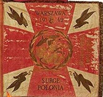 Marian Walentynowicz - 1st Independent Parachute Brigade (Poland) Standard, designed by Walentynowicz