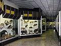T.Ivanausko muziejus5, 2006-12-02.jpg