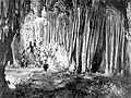TBT Carlsbad Caverns 1923.jpg