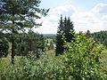 Taurene - panoramio.jpg