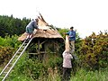 Thatching the Loo - geograph.org.uk - 1344416.jpg