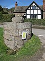 The Cross Well, Bodenham - geograph.org.uk - 1247447.jpg