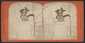 The Eagles, from Robert N. Dennis collection of stereoscopic views.png
