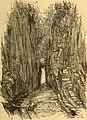 The Flume, White Mountains, 1868.jpg