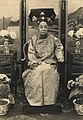 The Imperial Consort Jin in her old days.jpg