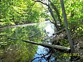 The Lawrence Brook, Monmouth Junction, New Jersey USA May 2013 - panoramio (10).jpg