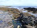 The Vian, looking towards Bow Head - geograph.org.uk - 953808.jpg