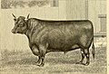 The breeds of live stock, and the principles of heredity (1887) (14594684209).jpg