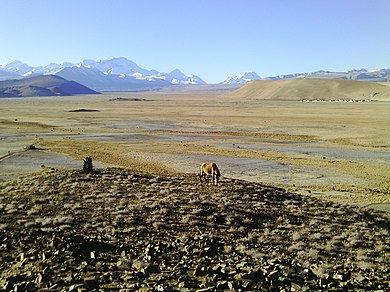 Typical landscape Tibet, a walk into no where.JPG