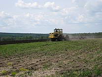 Tillage near the Suhobuzimskoe.JPG
