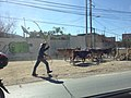 Tixtla cowboy - panoramio (2).jpg