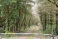 Toberbrackan - geograph.org.uk - 1266304.jpg