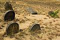 Tombstones - Jewish cemetery in Karczew, Otwock County, Masovian Voivodeship, Poland. - panoramio (9).jpg