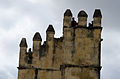 Torre de los Leones - Alcázar de Córdoba.jpg