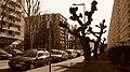 Toulouse - Rue Louis-Antoine de Bougainville - 20120309 (1).jpg