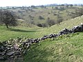 Towards High Dale - geograph.org.uk - 1213106.jpg
