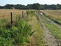 Track, Curridge - geograph.org.uk - 928049.jpg