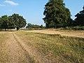 Track near Pen Ponds, Richmond Park - geograph.org.uk - 29691.jpg