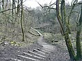 Track through Gower Hey Wood - geograph.org.uk - 1207913.jpg