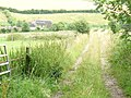 Track to Warren Farm - geograph.org.uk - 915149.jpg