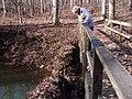 Trail 2 PB250217.jpg