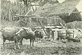 Travels in north and central China (1902) (14595430099).jpg