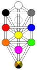 Tree of life kircher plain color.png