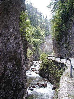 Trigrad Gorge - The Trigrad Gorge