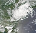 Tropical Storm Allison- SC.JPG