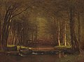 Trout Brook in the Catskills A35206.jpg