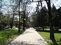 Tsvetnoy boulevard Sochi.jpg