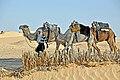Tunisia-3658 - Here come the rides...... (7847620450).jpg