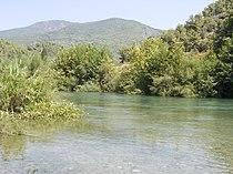 Turkey, Alanya - Dim river 01.jpg