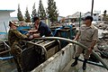 US Navy 050109-N-9885M-030 Navy and Marine Corps personnel work with a Royal Australian engineer to repair a water pump system.jpg