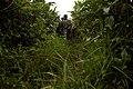 Ugandan Army Land Navigation Course DVIDS81203.jpg