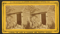 Uncle Jack, or the Oldest inhabitant of St. Augustine, Florida, from Robert N. Dennis collection of stereoscopic views.png
