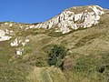 Upper chalk outcrop at White Nothe - geograph.org.uk - 266779.jpg