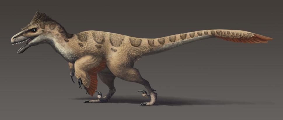 Utahraptor updated
