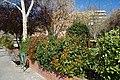 VIEW , ®'s - DiDi - RM - Ð 6k - ┼ MADRID PARQUE MUNICIPAL en MADRID (PEÑUELAS) - panoramio (1).jpg