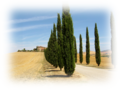 Val d'Orcia, nuanced.png