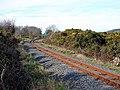 Vale of Rheidol Railway track - geograph.org.uk - 683461.jpg