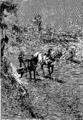 Verne - P'tit-bonhomme, Hetzel, 1906, Ill. page 211.png