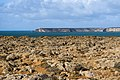 View from Sagres to Cape St. Vincent 2019-11-15-2.jpg