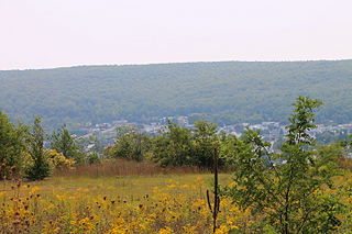 Mount Carmel, Pennsylvania Borough in Pennsylvania, United States