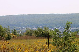 Mount Carmel, Pennsylvania - View of Mount Carmel from the northeast