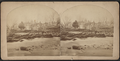 View of a flood and destroyed bridge, by Bolton, G. M. (George M.).png
