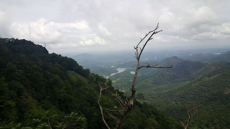 File:View of the Malabar rainforests from Kakkayam Valley, Kerala, India.jpg