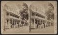 View on Simpson Avenue, Chautauqua, N.Y, by Walker, L. E., 1826-1916.png